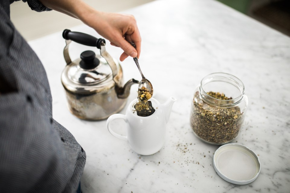 6 Tips For Creating An Herbal Routine | Herbal Academy | Learn how to create an herbal routine that allows you to integrate herbal supports and other wellness practices into your daily life with greater ease.