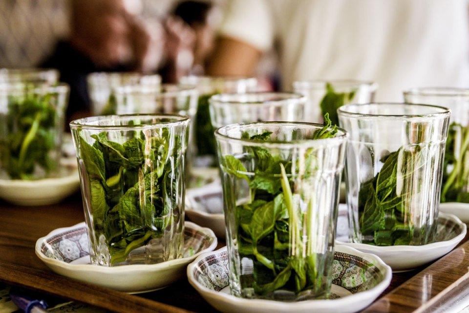 fresh herbs are wonderful in herbal cocktails