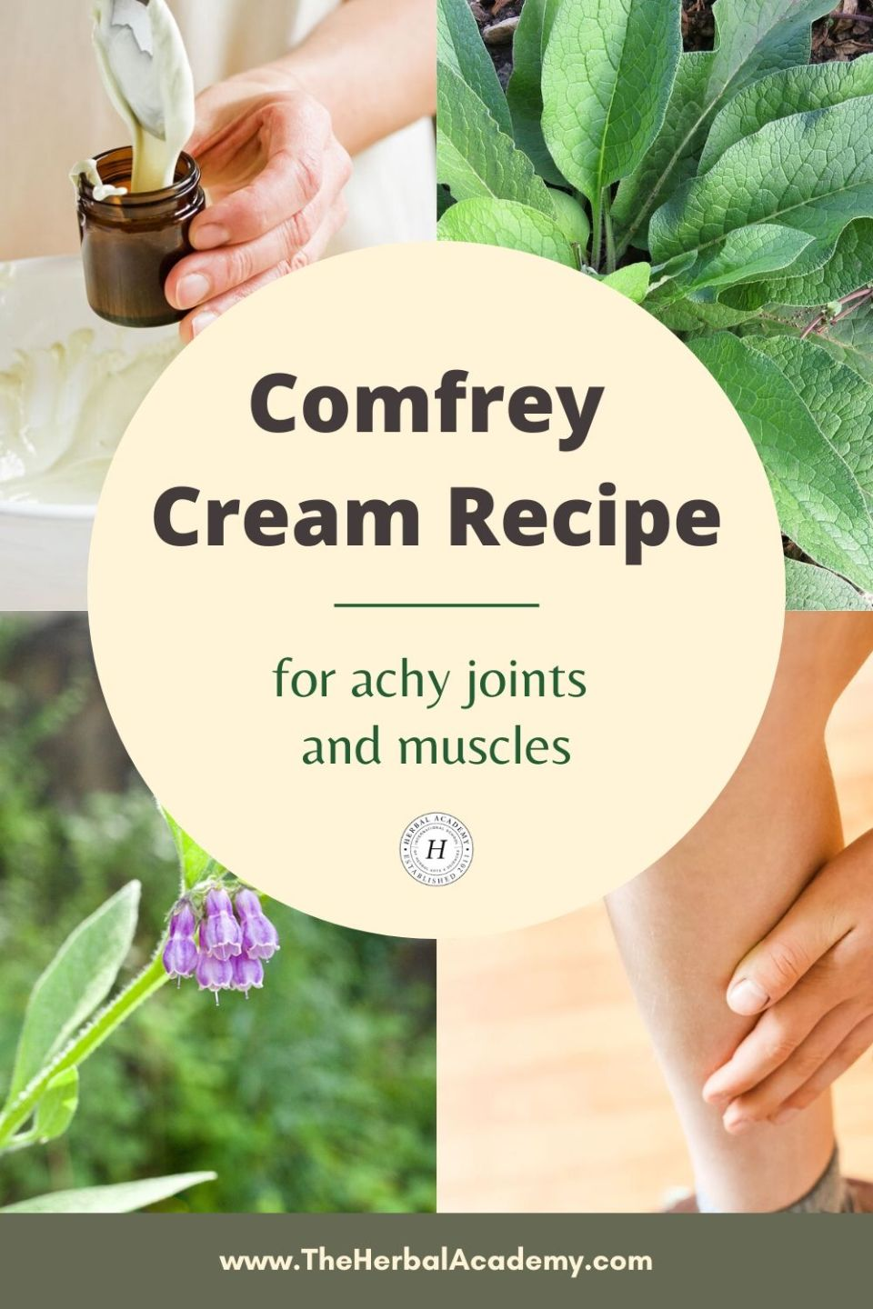 Comfrey Cream Recipe for Achy Joints and Muscles | Herbal Academy | Learn how to make this simple comfrey cream recipe featuring comfrey root tincture to ease achy joints and muscles naturally.