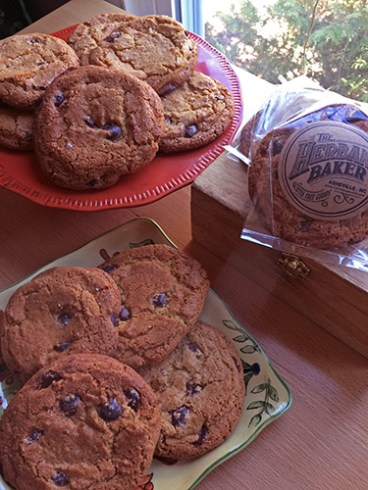 choc-chip-cookies-small