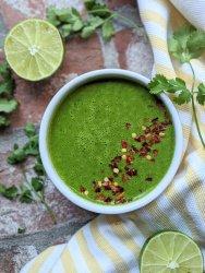 cilantro lime chimichurri sauce