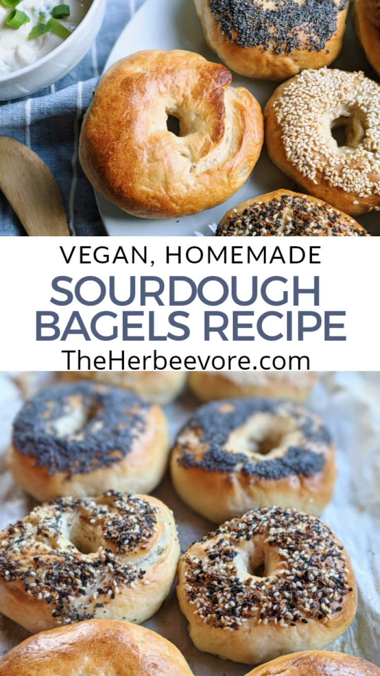 sourdough bagels recipe vegan homemade healthy pantry staple ingredients sourdough starter discard recipes bread