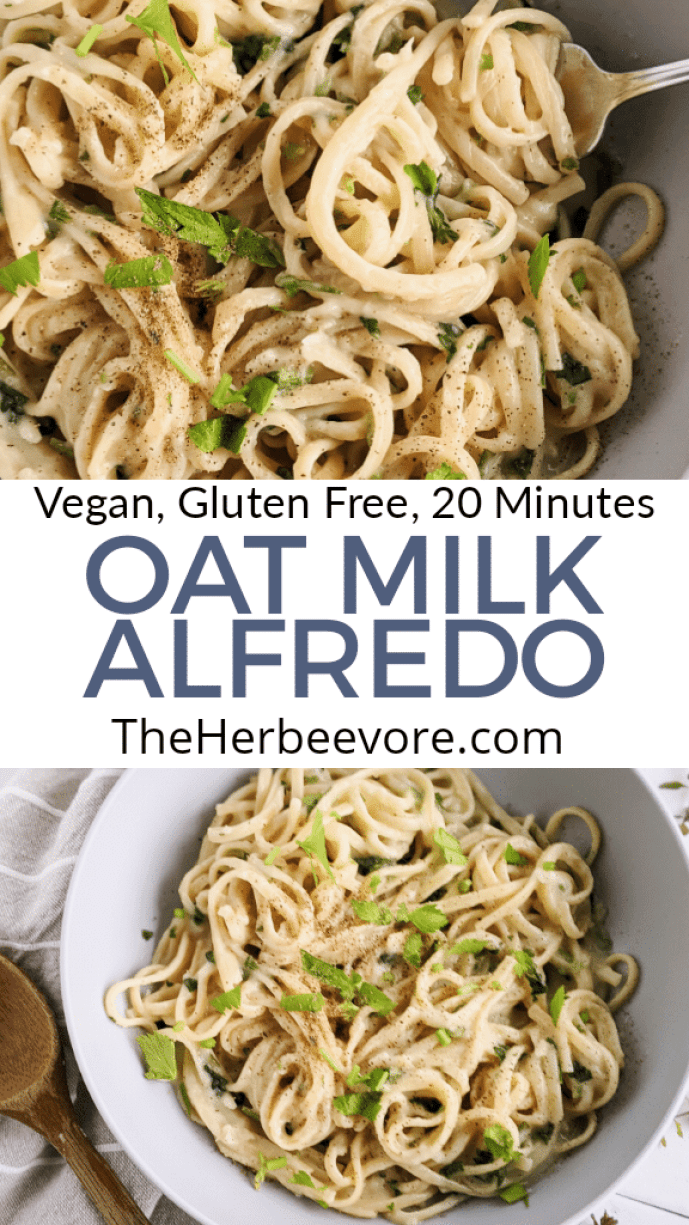 oat milk fettuccine alfredo recipe healthy gluten free pasta sauces ready in 20 minutes healthy easy dinner cheap