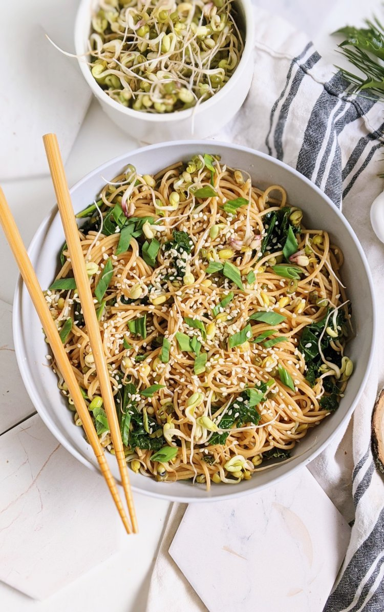 healthy easy vegan garlic noodles with seasme seeds and oil chili oil sriracha noodles easy lunches at home pasta for lunch recipes