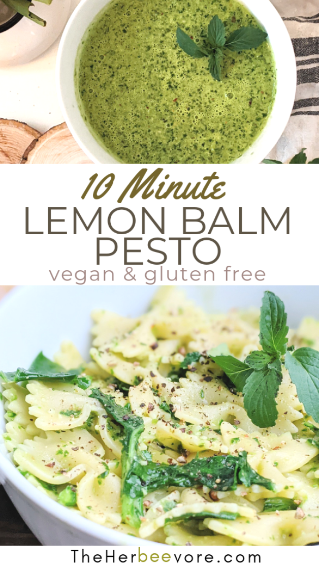lemon balm recipes vegan gluten vegetarian recipes with lemon balm healthy homeopathic lemn basil recipes