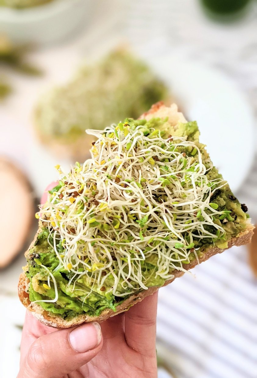 alfalfa avocado toast with sprouts recipes for breakfast avocado with lemon juice garlic and steak spice and chili flakes topped with home grown alfalfa sprouts easy recipes