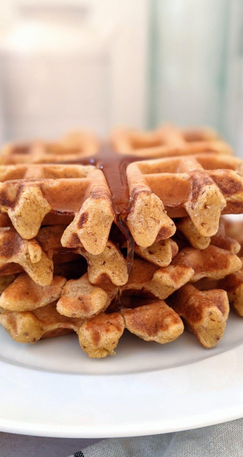 corn meal in waffles recipe vegan dairy free fluffy waffles with corn meal no yeast waffles easy 15 minute breakfast recipes