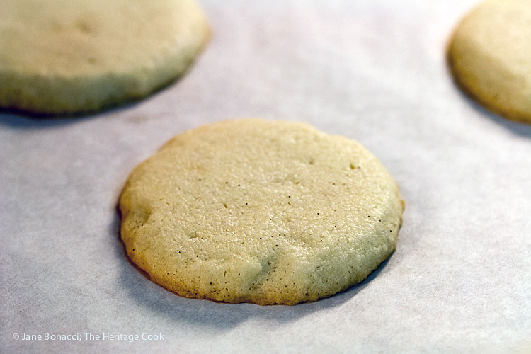 Hot from the oven, slight coloring at the edges; Chocolate Stuffed Vanilla Shortbread Cookies (Gluten-Free) © 2017 Jane Bonacci, The Heritage Cook. All rights reserved.