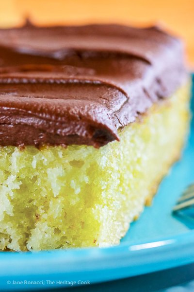 Tender Yellow Cake with Fudge Frosting (Gluten-Free)