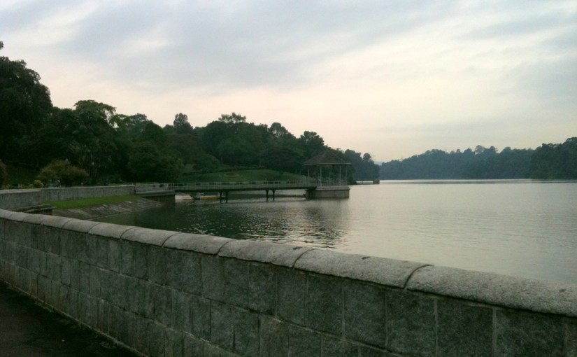 Panoramic View : MacRitchie Reservoir