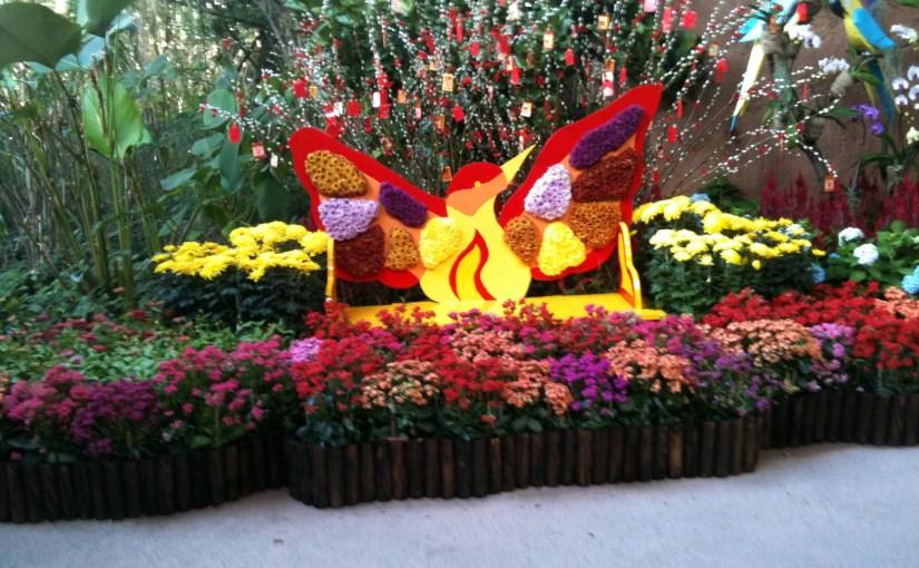 Colors : Jurong Bird Park Entrance Garden