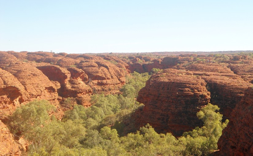 Meandering At Kings Canyon's Wilderness