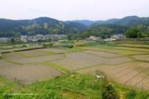 Takatsuki Walks : A Trek to Kabusanji Temple