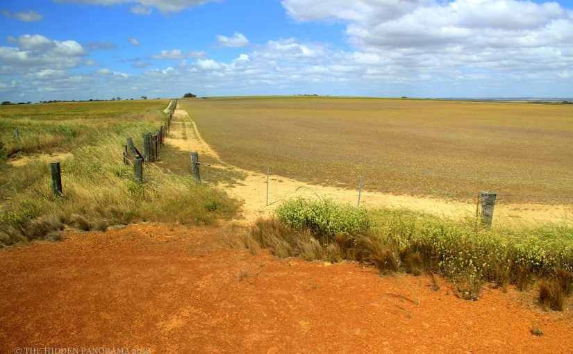 Discovery : Rabbit-Proof Fence (State Barrier Fence of Western Australia)