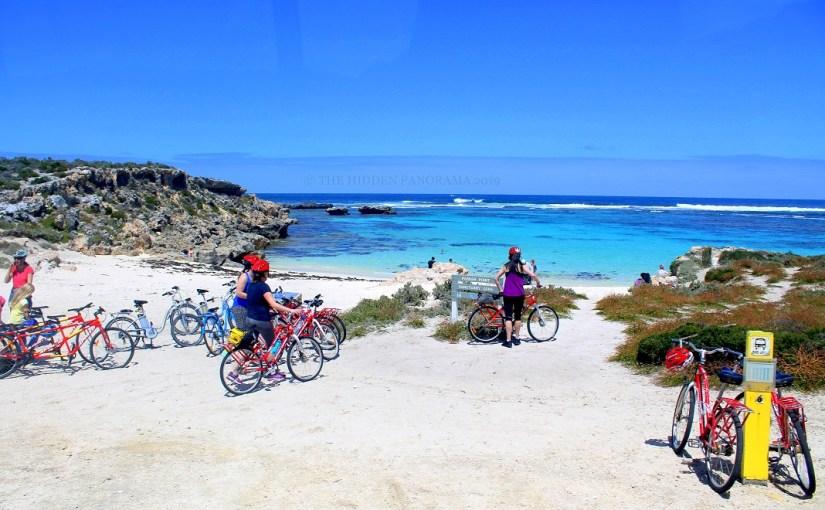 Transportation : Rottnest, WA – Bicycle