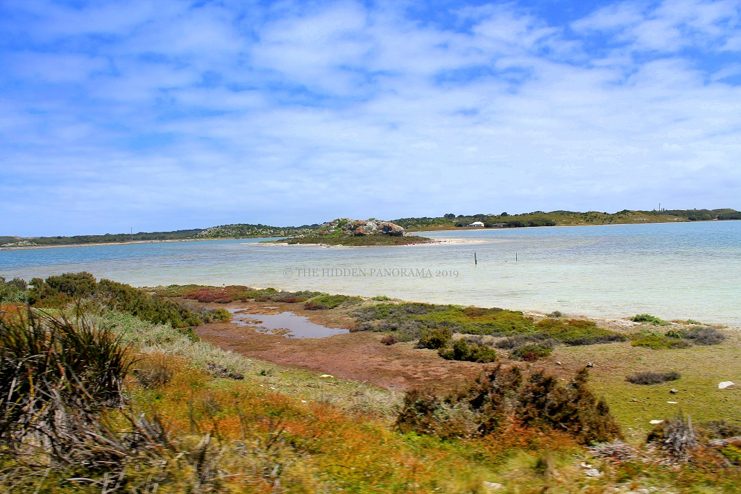 5 Reasons Why Rottnest Island Is Your Next Perfect Holiday Destination?