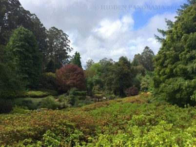National Rhododendron Garden and Grant Picnic Ground