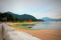 "Miyajima (Itsukushima) Island - ""Island of Gods"""