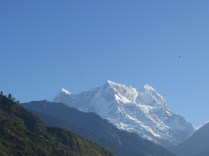 Chaukhambha peak from GMVN