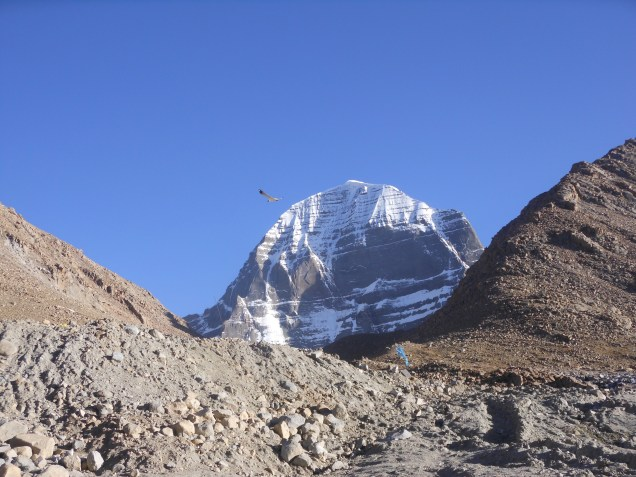 Lucky bird flying around Kailash