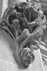Wells lizard