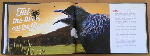 The Spectacular and Utterly True History of Tui - James Griffin