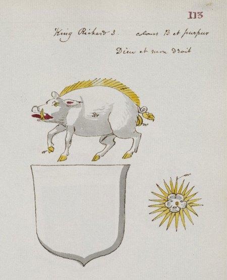 Image of a boar