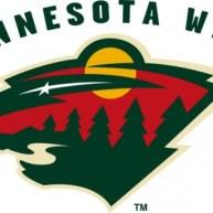 The Minnesota Wild need Jonas Brodin to keep playing well.
