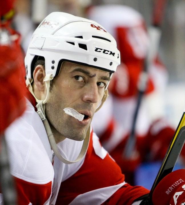 Todd Bertuzzi Red Wings