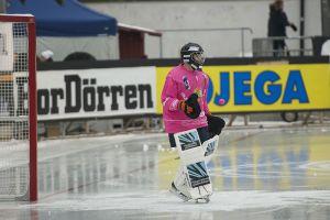 Bandy Goalie (Arild Vågen)