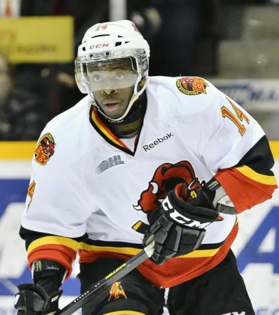 Jordan Subban (Terry Wilson/OHL Images)