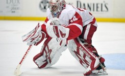 Red Wings Prospect Petr Mrazek Motivated to Improve