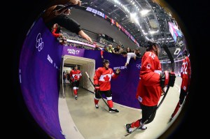 The fans in Sochi seem to be enjoying the Games (Scott Rovak-USA TODAY Sports)
