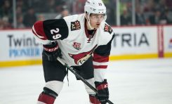 Coyotes Push Back Too Late