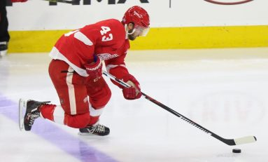 Red Wings, Vegas Expansion Draft Options