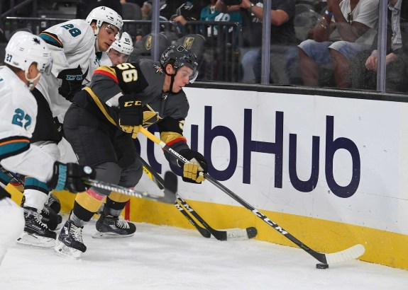 Vegas Golden Knights left wing Erik Haula