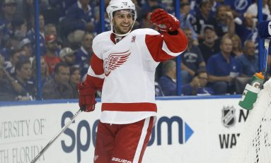 Nielsen Finding His Way with Red Wings