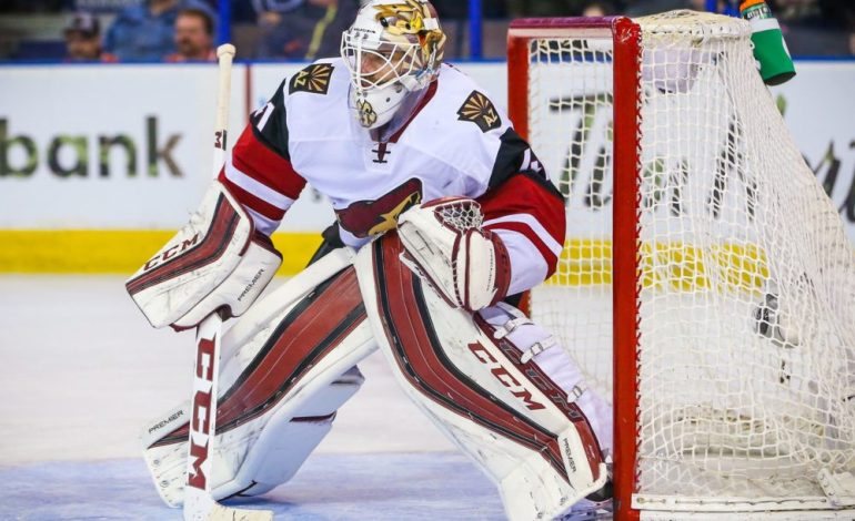 Smith Outstanding, Coyotes Not