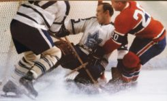 50 Years Ago in Hockey: Bruce Gamble a Sure Thing for Leafs