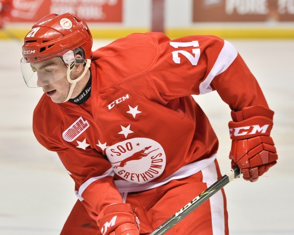 Conor Timmins, OHL, Sault Ste. Marie Greyhounds