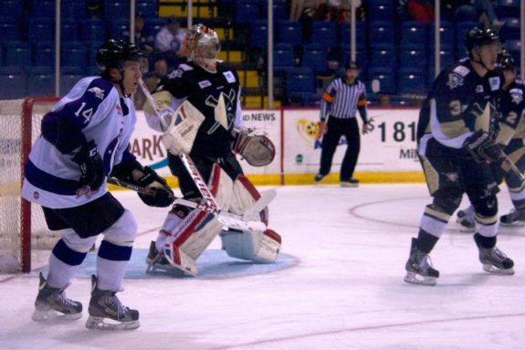 Reading Royals Forward T.J. Syner  faces the Wheeling Nailers in late November 2013. (Annie Erling Gofus/The Hockey Writers)