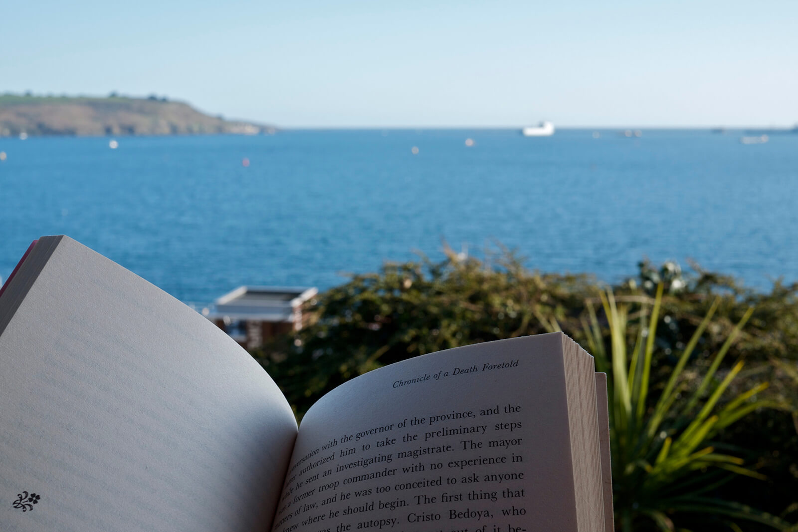 Reading by the sea is a great way to relax on vacation -- another reason solo travel is better than group travel because you can do things like this without feeling guilty