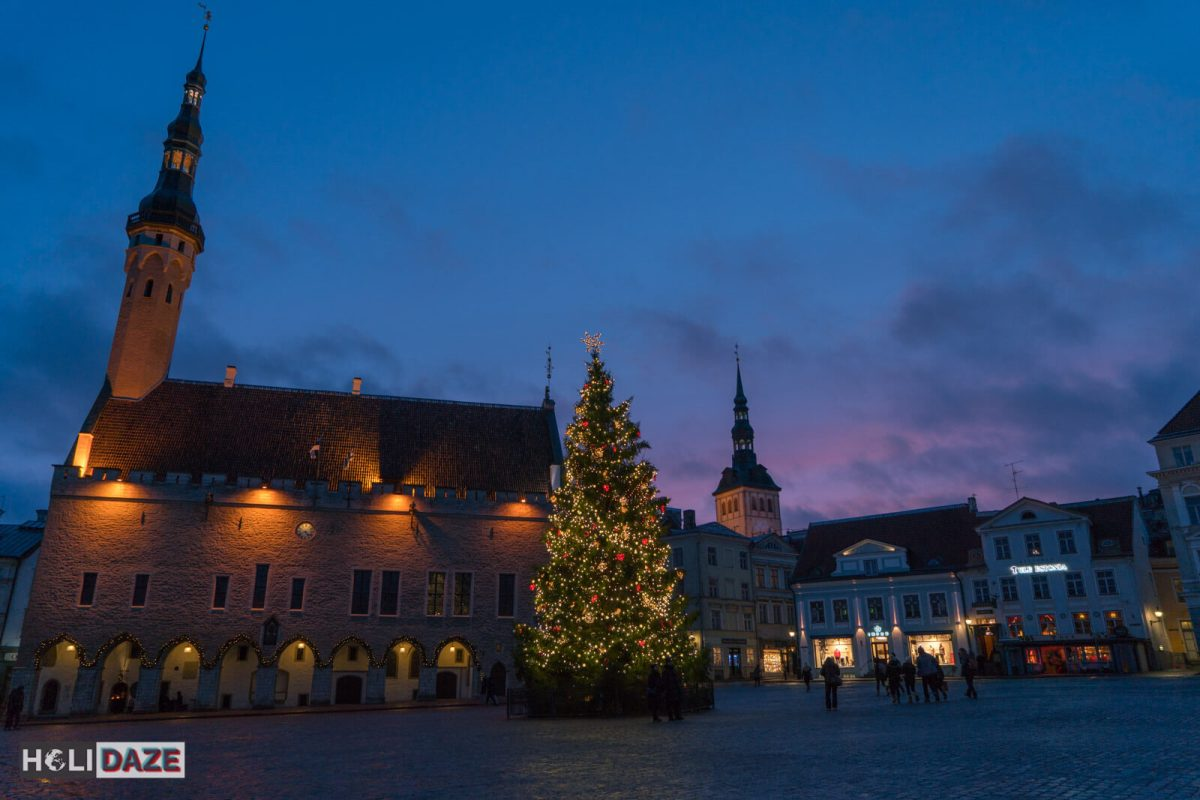 Sunset over the Christmas tree in the Old Town Square of Tallinn, Estonia