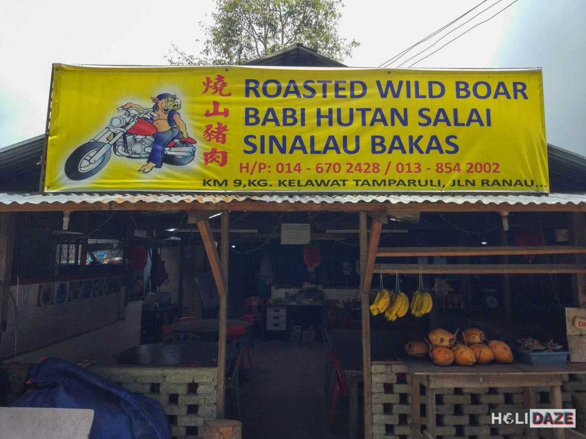 The best Babi Hutan (Sinalau Bakas) restaurant in all of Sabah