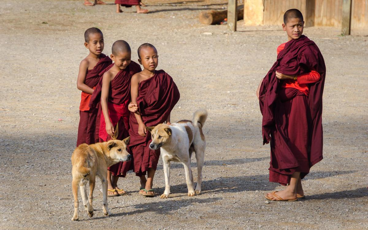 Buddhist monk kids in Myanmar are easy to distract