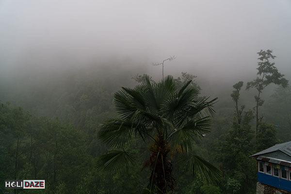 Lots of raining while trekking Annapurna Sanctuary