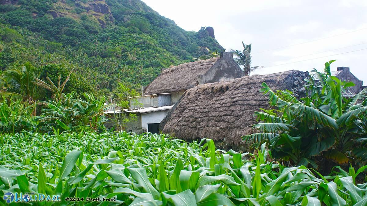 Pinned in by mountains on one side and ocean on the other, these small fields are all the residents Chavayan village on Sabtang island have