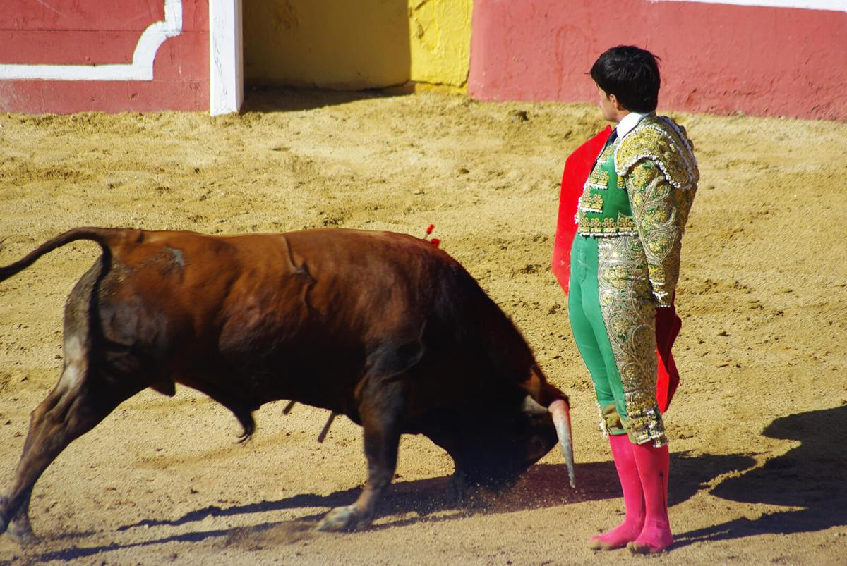 Bullfighting in Spain is a cultural event and everybody loves a good matador