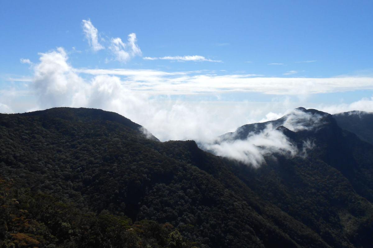Hiking the mountains of Horton Plains National Park in Sri Lanka