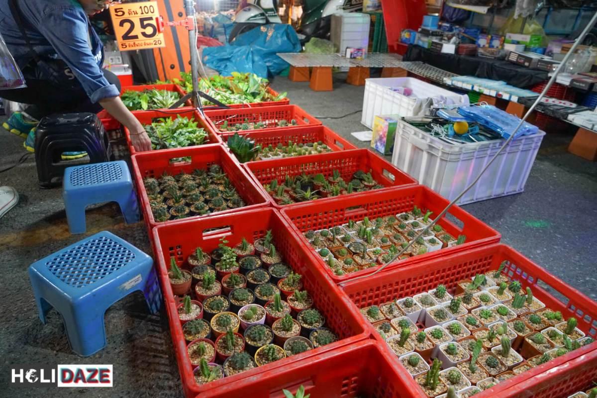 JJ Green Night Market in Bangkok